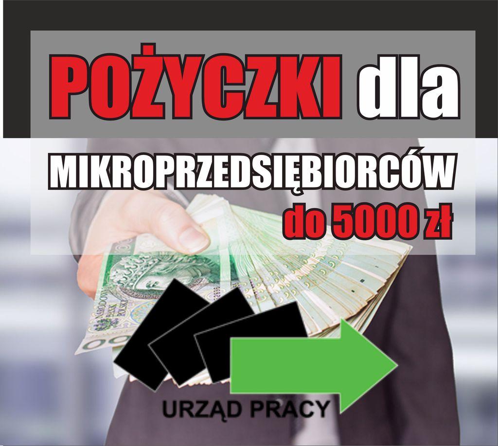 pożyczki dla mikroprzedsiębiorców grafika.jpeg
