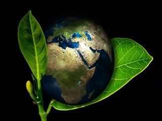 Ziemia - Ekologia.jpeg