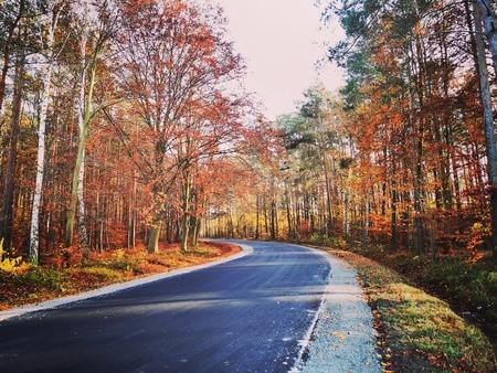 Droga na Krasowice (fot. Barbara Jarmuszewska)
