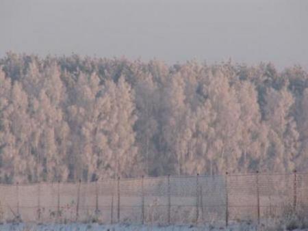 Galeria Kalinowski 2 powiat zima